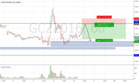 GCZ2016: gc 10 11 short