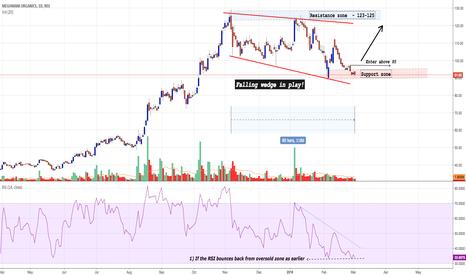 MEGH: Meghmani : Investment stock (Can rebound)