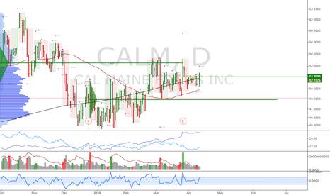 CALM: CALM: Long at market open