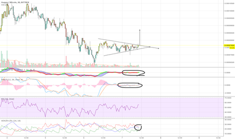 GUPBTC: GUP - To the moon!