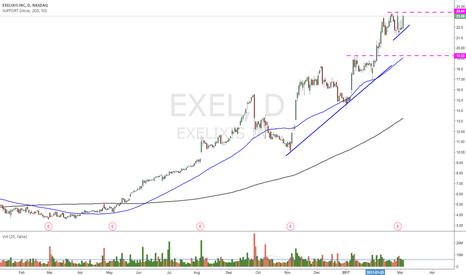 EXEL: $EXEL