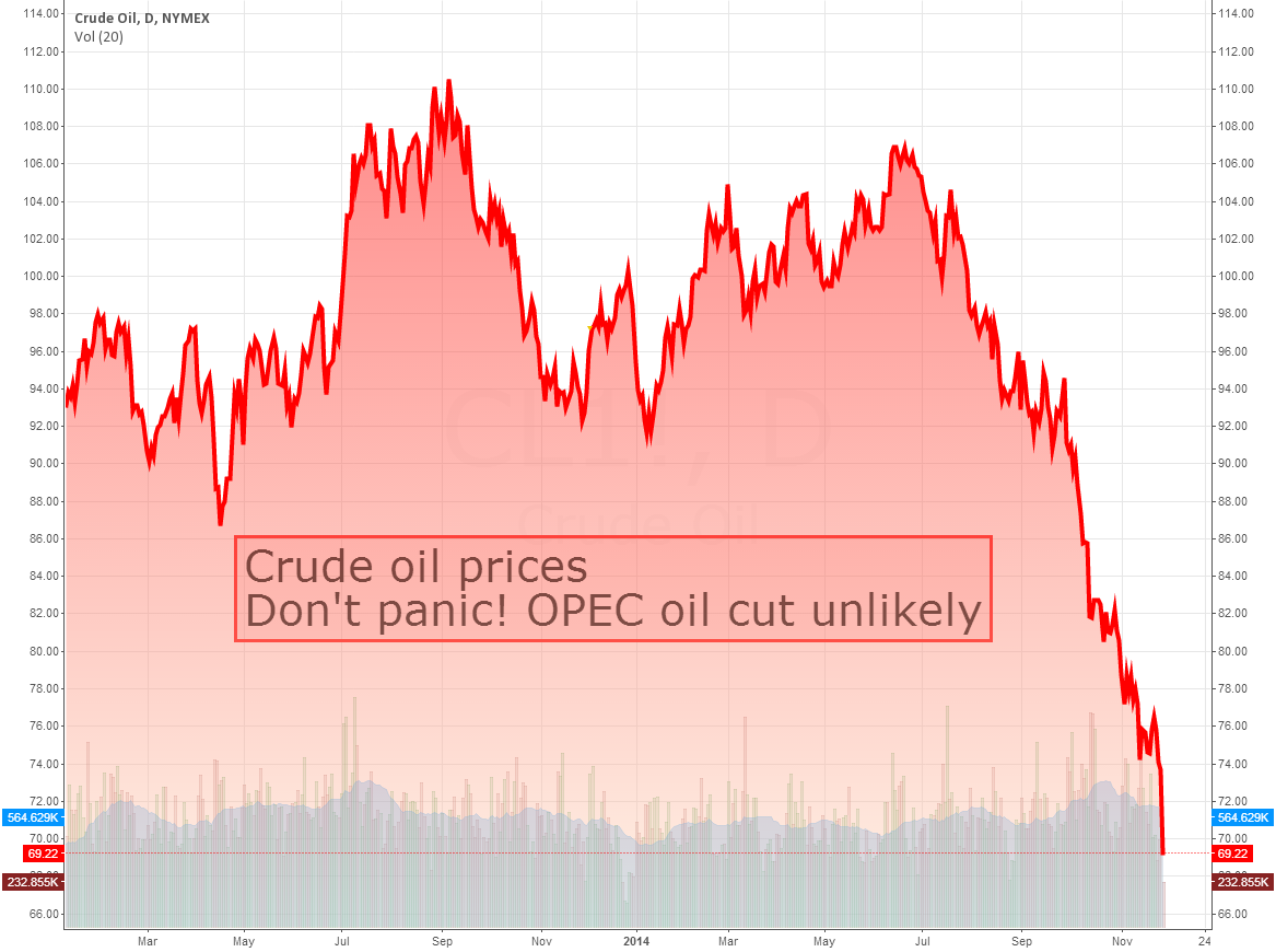 Don't panic! OPEC oil cut unlikely