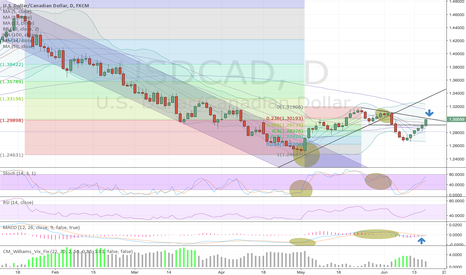 USDCAD: UsdCad in full bull mode