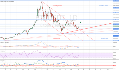 BTCUSDT: Bitcoin New Uptrend