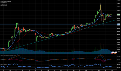 BTCUSD: Ready to break 950