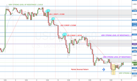 USDCAD: USD/CAD RISE FOR THE WEEK