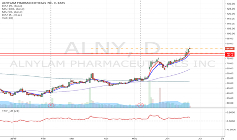 ALNY: ALNY -Flag formation long from & breakout Momentum Long