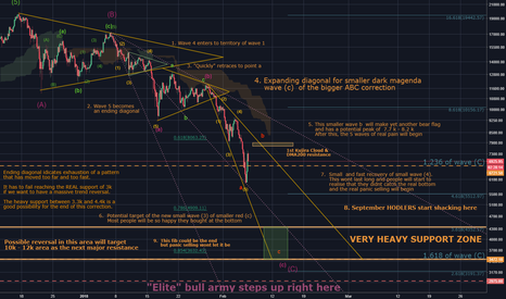 BTCUSD: Bitcoin's REAL bottom: A noob's idea OR a well executed plan ?