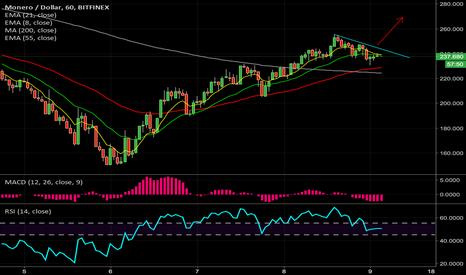 XMRUSD: Long Monero after 1 hr close above trend line