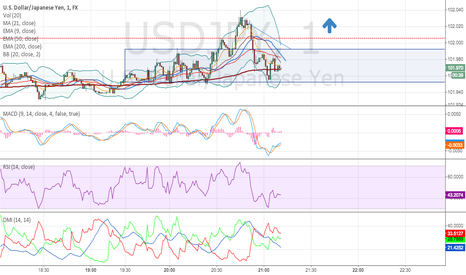 USDJPY: USD/JPN can go pretty high if disrupt the 102.000 resistance.