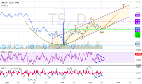 TS: TS cup with handle