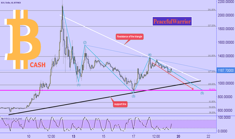 BCHUSD: Bitcoin CASH : descending 5th wave SHORT-TERM