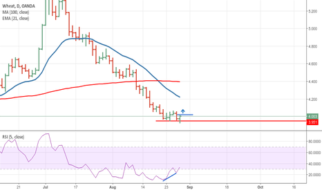 WHEATUSD: Great opportunity on Wheat! daily chart