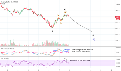 BTCUSD: Bitcoin Another Low Possible