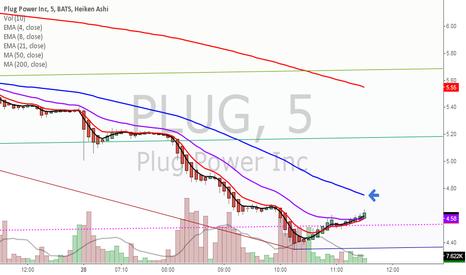 PLUG: Bull crossing again.
