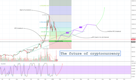 BTCUSD: The future of cryptocurrency
