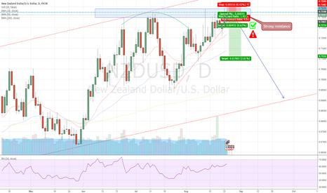NZDUSD: NZD/USD: Reached strong resistance; go short.