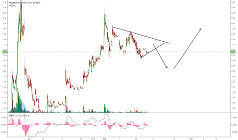 MBRX: MBRX: A DEEPER CORRECTION BEFORE ONE MORE WAVE UP?