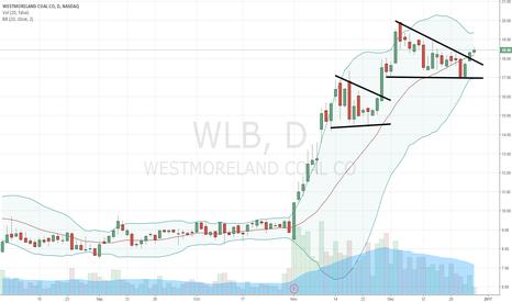 WLB: $WLB bull flag breakout