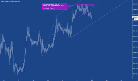 EURGBP: EURGBP - Whale fight uncovered.