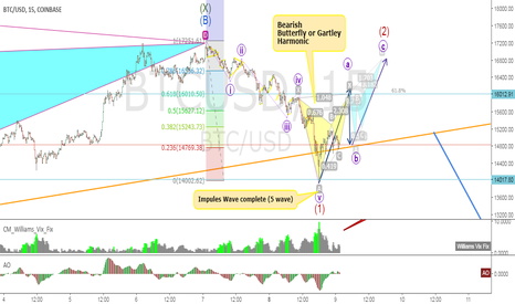 BTCUSD: Harmonic Pattern in Wave 2