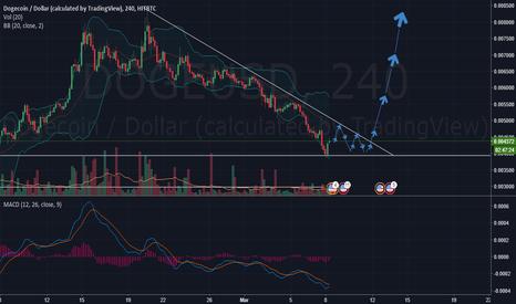 DOGEUSD: DOGE/USD