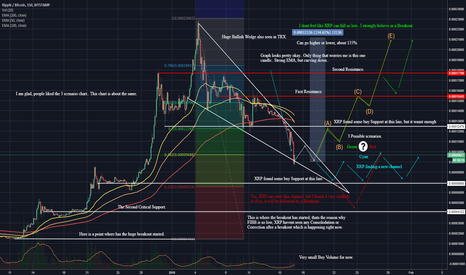 XRPBTC: XRP/BTC, Whats Going On And How To Profit From This Situation.