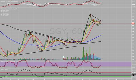SGY: SGY Flagging