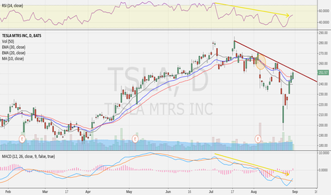 TSLA: Uphill battle for bulls, now at resistance (no posn)