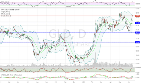 GLD: Contrarian View