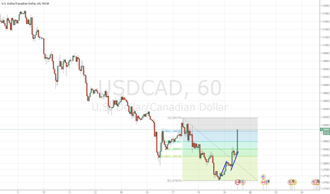 USDCAD: USDCAD no trades