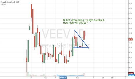 VEEV: VEEV - Veeva Systems Breakout