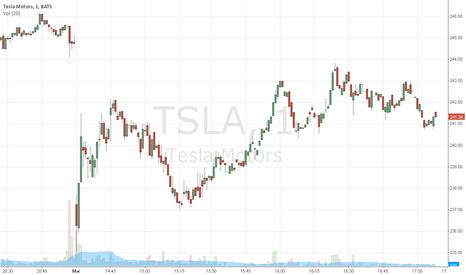 TSLA: TSLA weak