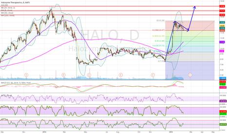 HALO: HALO Bull Pole