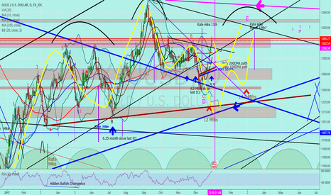 """XAUUSD: Jnug to Gold """"New cycle started couple weeks early"""""""