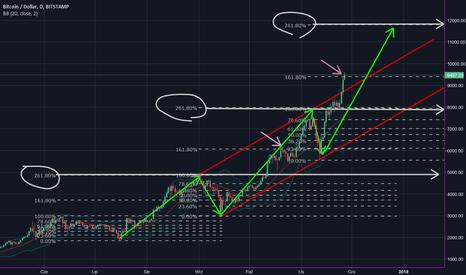 BTCUSD: BTC/USD  261.80 % Zniesienaia Fibonacciego okolice 12.000 $