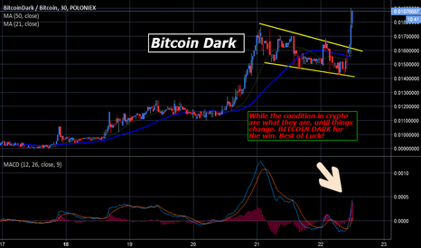 BTCDBTC: Bitcoin Dark for a Friday play!!  Could it be??  BTCD/BTC