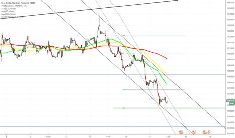 USDMXN: USD/MXN 1H Chart: Trades near weekly S2