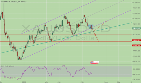 XAUUSD: Gold Focus Trend Line&Channel