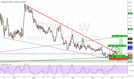 ZW1!: Wheat - Mar $4 Support?