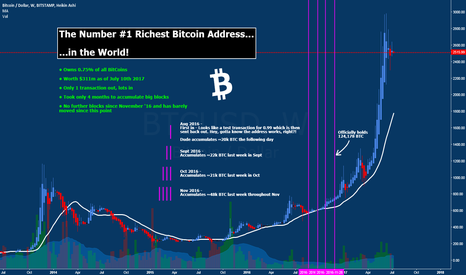 BTCUSD: The Number #1 Richest Bitcoin Address in the World!