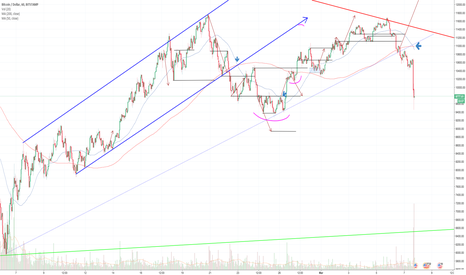 BTCUSD: BTC:USD 1 hour chart DAILY UPDATE (day 14)