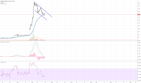 NLNK: NLNK looks to be forming a bull flag after a over 100% run