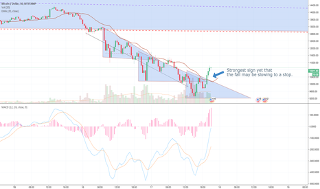BTCUSD: BTC: Strongest sign yet the fall may be ending - can it hold?
