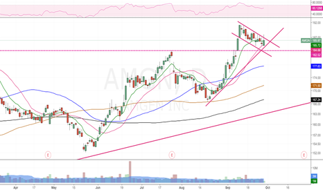 AMGN: One more attempt to break the Bull flag today , looking good.