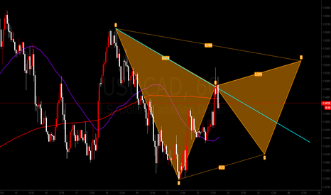 USDCAD: Gartley Pattern