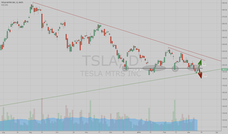 TSLA: Who Made $195 So Important ???