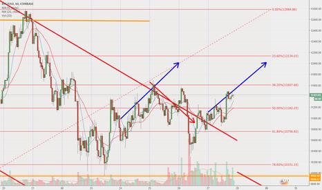 Trader Cointhunter01 — Trading Ideas & Charts — TradingView UK