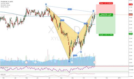 XYL: Nice BAT pattern on XYL (10)
