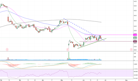 YELP: Hammer on daily with that bounce. Go Long.